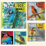 Зошит в клітинку 36 аркушів кольорова обкладинка, дизайн: Птахи  Тетрада ТЕ51411