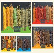 Зошит в клітинку 96 аркушів кольорова обкладинка, дизайн: Спеції Тетрада ТЕ51710