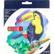 Олівці кольорові акварельні, 24 шт. Kite Птахи K18-1050 (1)