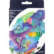 Олівці кольорові акварельні, 36 шт. Kite Птахи K18-1052 (1)