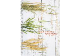 Блокнот Малюнки природи: Пшениця, А4, обкл. картон, бок. спіраль, 80 арк., кліт. O20330-30 (1)