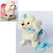Собака, на дистанционном управлении, 22 см, музыка (рус), звук, ходит, шевелит хвостом, 2 цвета, на