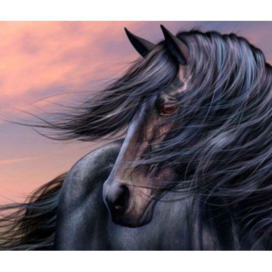 EKTL2032_O Раск-ка по номер. 30*40см Лошадь OPP (холст на раме краск. кисти. ) (30)