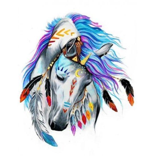 EKTL2049_O Раск-ка по номер. 30*40см Лошадь индейцев OPP (холст на раме краск. кисти. ) (30)