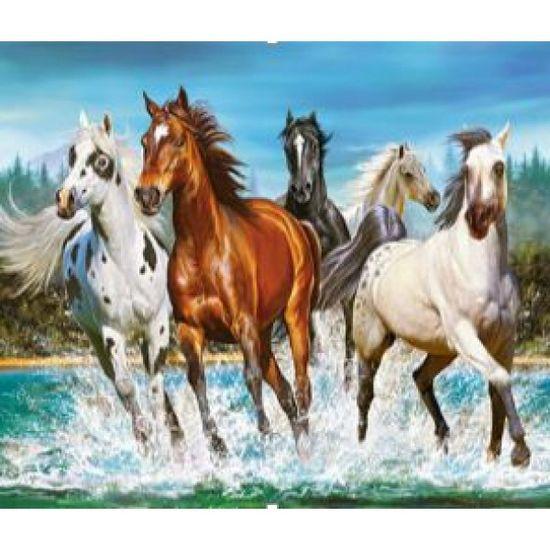 EKTL2086_O Раск-ка по номер. 30*40см Лошади OPP (холст на раме краск. кисти. ) (30)