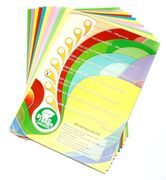 Бумага цветная офисная А4 IQ Mix 80 г/м2 250 листов 10 цветов по 25 листов